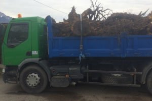 Camion-19t